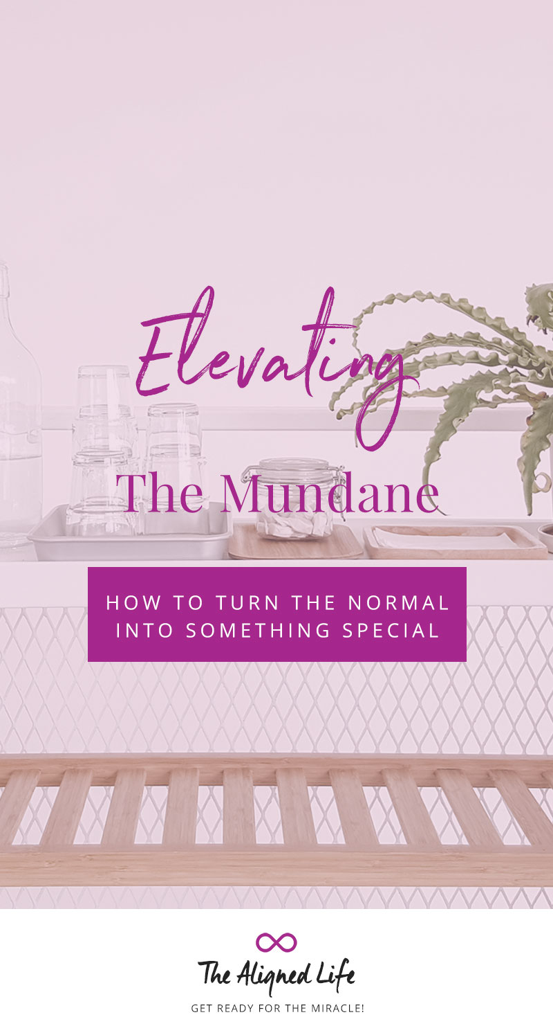 Elevating The Mundane