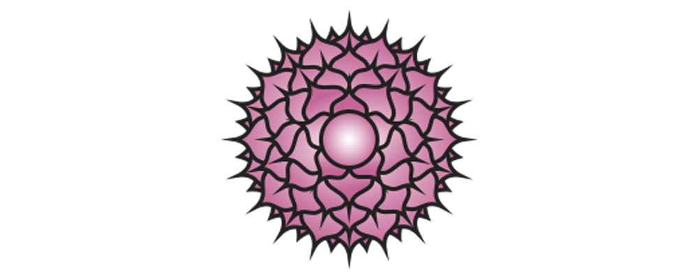 How To Manifest With Your Chakras Sahasrara