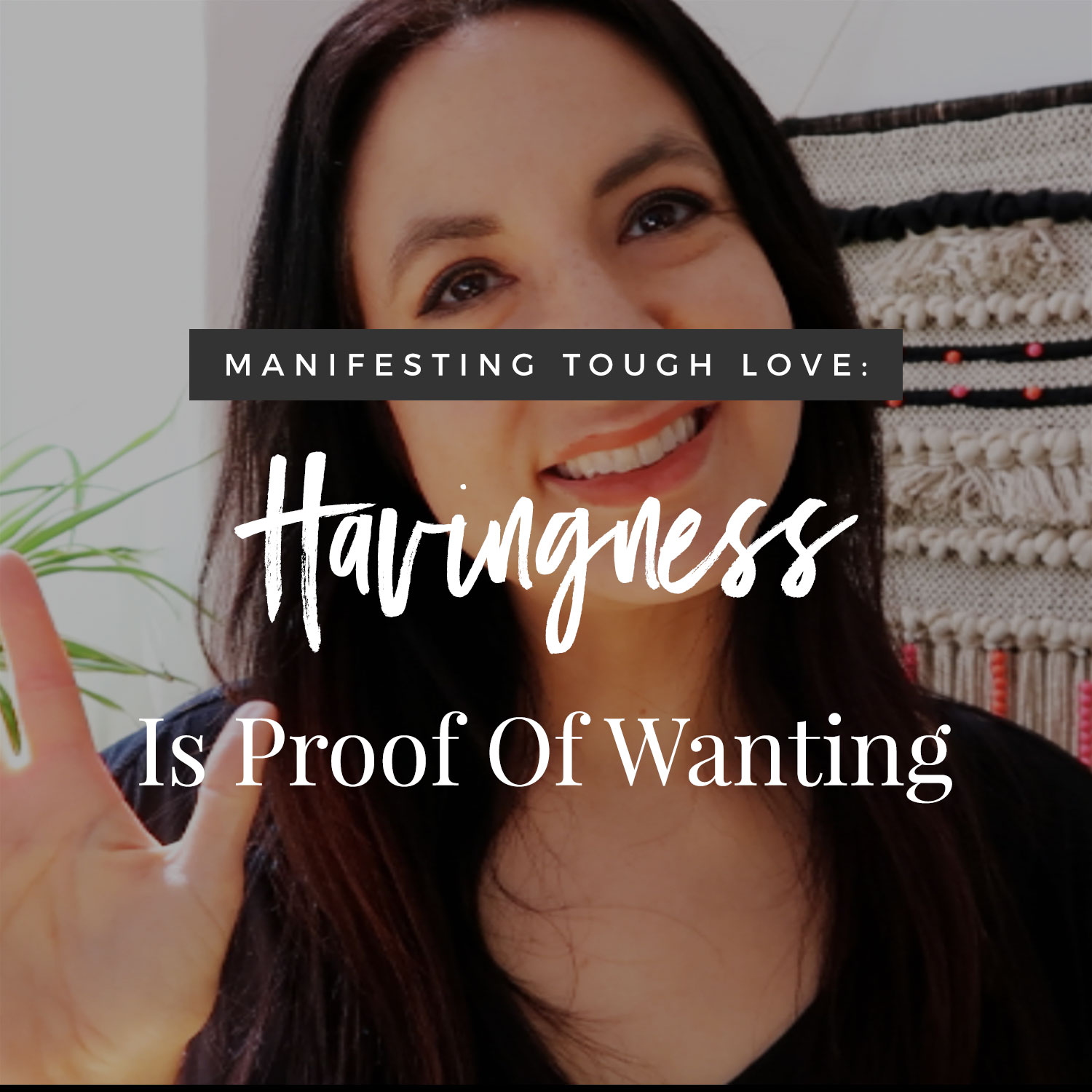 Havingness Is Proof Of  Wanting